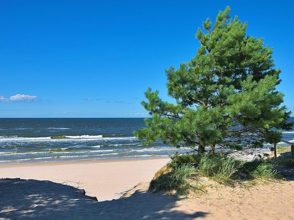 Wejście na plażę. Piękne polskie morze z falami.