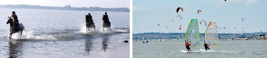 Jazda konna nad morzem oraz inne sporty wodne.